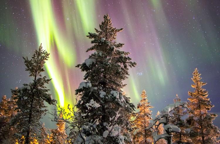 Tromso e natura
